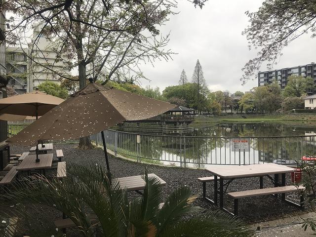池とパラソル