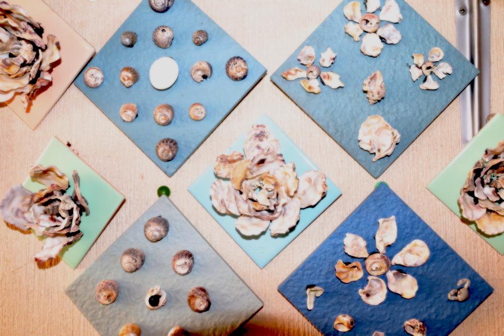 牡蠣の殻でできた作品